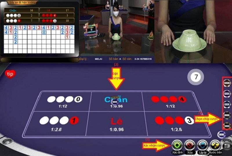 chọn Vào chơi và tiến hành đặt cược Dubai Casino